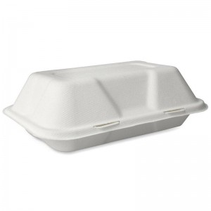 Bagasse 1 Compartment Takeaway Box